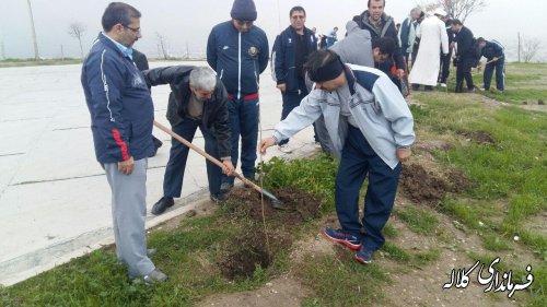 درخت کاری درحاشیه  مزار شهدای گمنام شهرستان کلاله