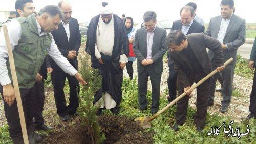 25 هزار اصله نهال درختان مثمر بین احاد جامعه به صورت رایگان توزیع شد