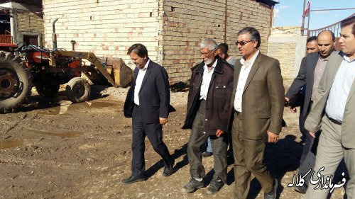 بازدید فرماندار کلاله از گاوداری دریافت کننده تسهیلات روستایی.