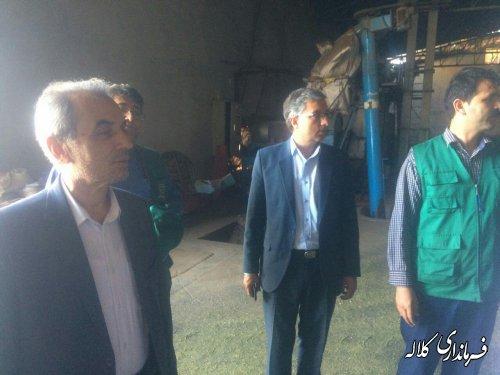 بازدید سرپرست فرمانداری کلاله از مراکز خرید کلزا در شهرستان