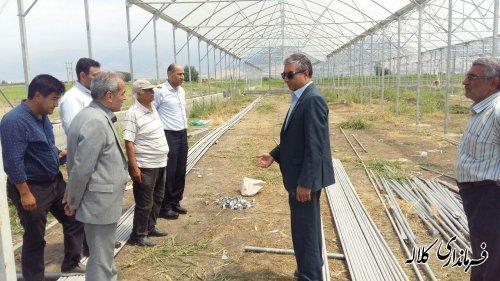بازدید فرماندار کلاله از پروژه احداث بزرگترین گلخانه شهرستان