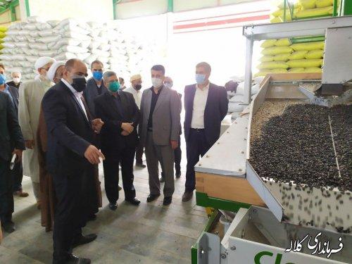 یک واحد صنعتی فرآوری تخمه هندوانه و آفتاب گردان در شهرک صنعتی دهنه افتتاح گردید